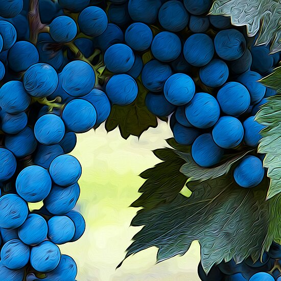 Glorious Grapes by Brendon Perkins