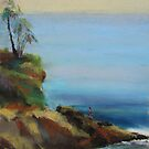 Diver&#x27;s Cove, Laguna Beach  by Leslie Gustafson