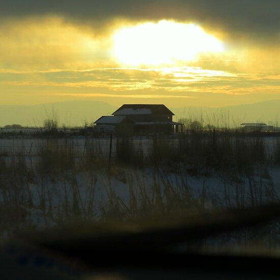 Determined Sun..Outside Jentura, Oregon by trueblvr