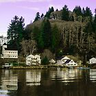Downtown Skamokawa, Washington by lascelles795