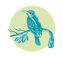Kingfisher Perching On Branch Woodcut  by patrimonio