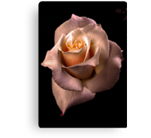'' THE ROSE '' [1] Canvas Print