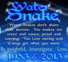 Chinese Zodiac water snake 1953 & 2013  by Valxart