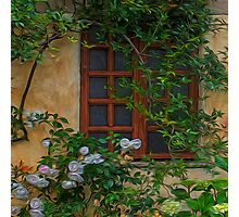 Mission Window Photographic Print