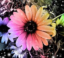 Rainbow Daiseys by unicorngirl