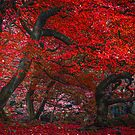 The red forest by BenRobsonHull