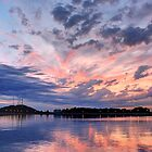 Cobbs Hill Symmetry by Lisa Cook