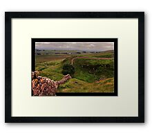 Sycamore Gap Framed Print