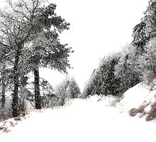 """"""" Whiteout """" by CanyonWind"""