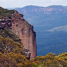 Blue Mountains National Park by Deborah McGrath