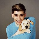 One Direction Zayn Malik Puppy by meow-or-never10