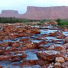 Colorado River near Moab, Utah, America by Deb22
