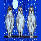 THREE WISE OWLS by pjmurphy