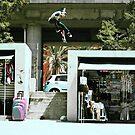 Jamie Thomas 3 Flip by foremanphotos