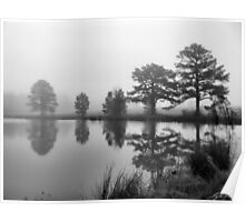 Foggy Pond Poster