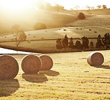 Hay Bales by Briony  Williams Photography