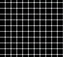 Optical Illusion by Irina Chuckowree