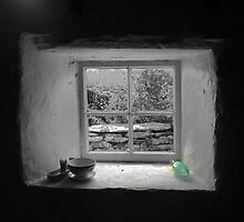 60N...The Croft (3) From inside  (1) by cullodenmist