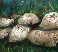 Mushroom study by ButtercupSaiyan