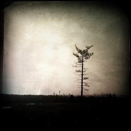 Lone by hipstamatic
