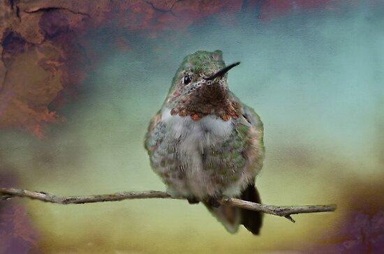 Sweet Hummingbird by Barbara Manis