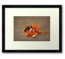 The Bird Dog - Puppy with feathers Framed Print