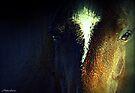 Blaze Of Glory by naturelover