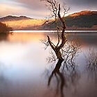 Loch Lomond by Photo Scotland