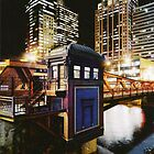 The Tardis of Chicago by Leti Mallord