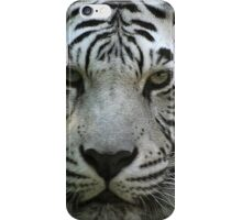 Stripes on a tiger don't wash away............ iPhone Case/Skin
