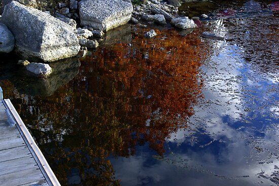 REFLECTIONS OF AUTUMN IN WATER by jclegge
