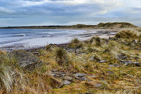 Dunnet Beach by Chris Cardwell
