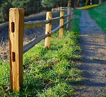 Cedar Picket fence on hill by bobkeenan