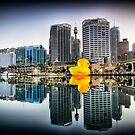 Well that's just Ducky by Ian Berry