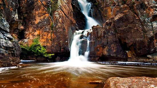 Orange Pool with Fern and Falls.  by Alex Fricke