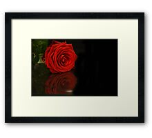 flower reflections II Framed Print