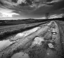 Bleak Road BW by Andy Freer