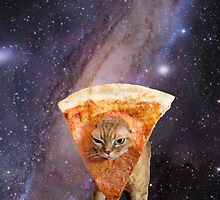 pizza cat by WaterMelanie