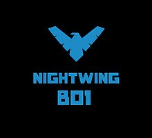 Nightwing - YJ by notafantasy