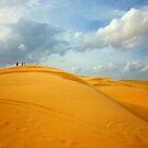 sand dunes by Nicola Honey