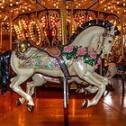 Carousel Beauty by Gwndorlin