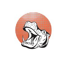 Hippopotamus Head Retro  by patrimonio