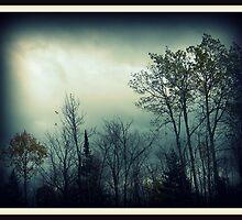 Serenity ! by Elfriede Fulda