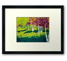The Birch Grove Framed Print