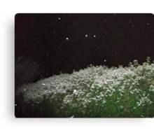 A touch of snow... Canvas Print