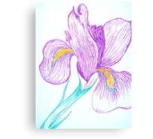 Iris in Ink  Canvas Print