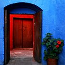 Blue Patio and Red Geranium by Alessandro Pinto