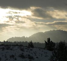 Frozen Sunbeams by © Betty E Duncan ~ Blue Mountain Blessings Photography