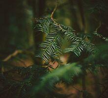 Natural Framing by Ric Hampton