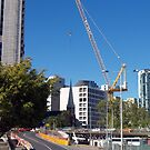 thee cranes ov Brisbane 2013 DAILY TOUR - Day 16 by Craig Dalton